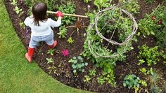 Imagine harvesting nearly half a ton of tasty, beautiful, organically grown vegetables from a 15-by-20-foot plot. You can with these tips and tricks to get the most out of your planting space. | Via Organic Gardening