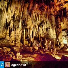 Stalactites and Stalagmites in all shapes and sizes #luraycaverns #VA #DiscoveryADay | From @Corynne Cafferty Carranza Gildea