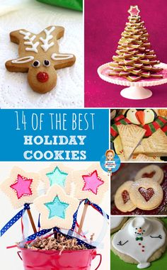 Don't miss these wonderful Holiday Cookies recipes that are gorgeous enough to give as gifts!