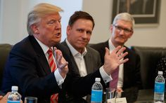 Peter Thiel is Pushing Donald Trump to Use Private Space Companies at NASA - Contracting - GovExec.com - http://governmentaggregator.com/2016/12/26/peter-thiel-pushing-donald-trump-use-private-space-companies-nasa-contracting-govexec-com/