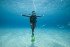 4 Types of Dives Every New Diver Should Try