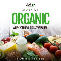 How to Eat Organic When You Have Digestive Issues Digestive System Process, Detox Organics, New Recipes, Healthy Recipes, Gastroesophageal Reflux Disease, Natural Detox, Eating Organic, Organic Recipes, How To Lose Weight Fast