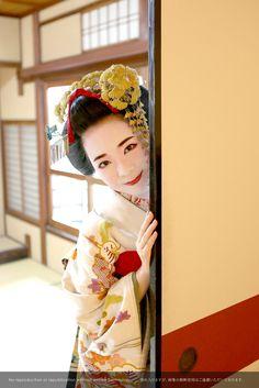 舞妓 お部屋撮影 maiko