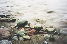 I am a Texan I collect sea glass and hearts I am a cancer survivor. Green Beach, Green Ocean, Anemone Flower, House By The Sea, Pipe Dream, Am Meer, North Sea, Beach Cottages, Newfoundland