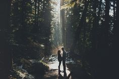 beautiful engagement shoot in the woods.