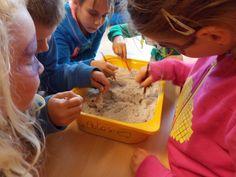 dino's opgraven zoals archeologen daarna fossielen maken