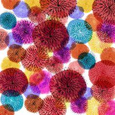 Talitha Shipman   mums pattern