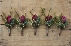Swallows Nest Farm: Early Autumn Wedding in the Huon Valley