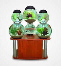 Top 20 Creative Aquariums (21 Pictures) > Fashion / Lifestyle, Funny Shizznits, Installationen, Netzkram > aquarien, creatvie, fish, goldfisch, ideas, stunning