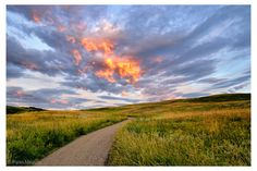 Nose Hill, Calgary. Beautiful place to walk!