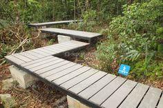 ELEVATED TIMBER WALK - Google Search