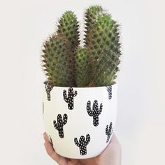 Vases – Home Decor : DIY cactus patterned flower pots with permanent markers -Read More – Cacti And Succulents, Planting Succulents, Planting Flowers, Cacti Garden, Decoration Cactus, Cactus E Suculentas, Pot Plante, Plants Are Friends, Deco Originale