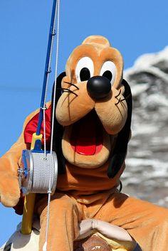Pluto - Gone fishin' Disney Parks, Walt Disney World, Pluto Disney, House Mouse, Old Cartoons, Tigger, Disneyland, Comedy, Lovely Things
