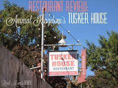Real Mom's Disney: Restaurant Review: Tusker House at Animal Kingdom