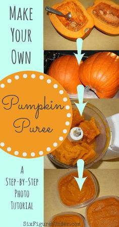 Freeze Pumpkin | Pumpkin Puree | What to do with Pumpkin | Can Pumpkin