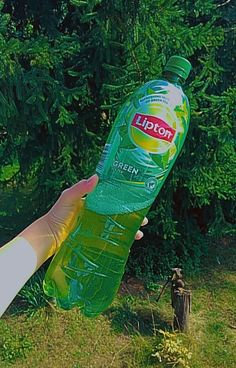 Lipton, Drink Bottles, Drinks, Iced Tea, Swag, Stickers, Food, Drinking, Beverages
