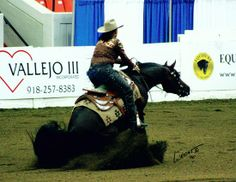 Im The Real Deal 2001 Arabian (MHR Muscateal+ x Kheyarraberribey v , Huckleberry Bey++)