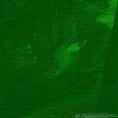 datagrafy: DeviantArt Spezial: Katze by datengraphie.deviantart.com on @DeviantArt
