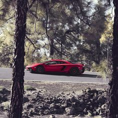 """""""Set your goals high for the next year and don't stop till you get there. #Lamborghini #AventadorSV #cool #2016"""""""