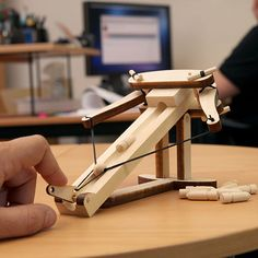 A mini Ballista, maybe a mini Trebuchet would be fun to make as well