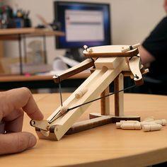 A mini Ballista, maybe a mini Trebuchet would be fun to make as well