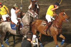 Polo match in Sotogrande