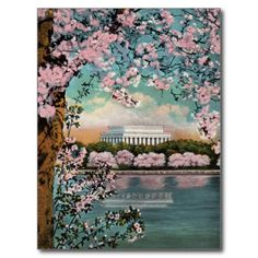 >>>Low Price Guarantee          Cherry Blossoms Vintage Postcard           Cherry Blossoms Vintage Postcard This site is will advise you where to buyHow to          Cherry Blossoms Vintage Postcard today easy to Shops & Purchase Online - transferred directly secure and trusted checkout...Cleck See More >>> http://www.zazzle.com/cherry_blossoms_vintage_postcard-239600190760628691?rf=238627982471231924&zbar=1&tc=terrest