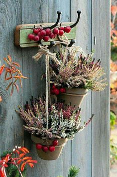 THIS COMPOSITION of heathers and paradise apples is rustic. Clay pots with diffe… THIS COMPOSITION of heathers and paradise apples is rustic. Clay pots with different varieties of heather were hung on ordinary strings. Autumn Decorating, Fall Decor, Deco Nature, Deco Floral, Flower Pots, Flowers, Autumn Garden, Fall Diy, Clay Pots