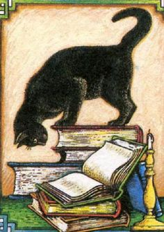 Cat looking at book