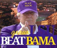 Lsu Tigers Football, Football Is Life, Alabama Football, College Football, House Divided, One Team, School Spirit, Louisiana, Cheerleading