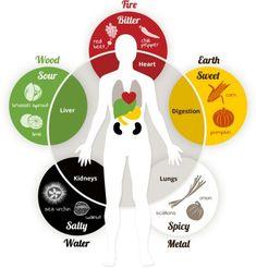 Chinese medicine organ/taste relationships