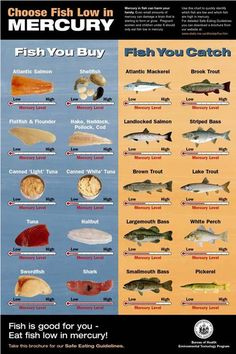 Fish with lowest mercury levels: Salmon, flounder, sole, tilapia, trout, cod. Highest mercury levels: tilefish, swordfish, mackerel, shark. Be aware that the place fish was caught and the type of fish matter.  Don't eat fish more than twice a week (increased risk of hemorrhagic stroke).