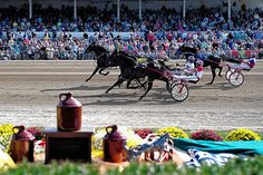 Limelight Beach captured the Little Brown Jug on a perfect day for racing in Delaware.