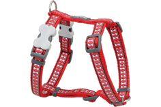 Red Dingo Dog Harness Reflective Bones Red DH-RB-RE (RHAS204 / RHAM204 / RHAL204 / RHAX204)