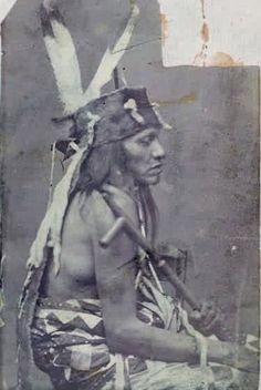 BLACK PRAIRIE CHICKEN , 1878