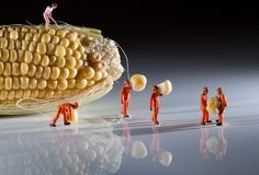 Little People Series by David Gilliver | JOQUZ