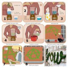 Moss Graffiti Recipe