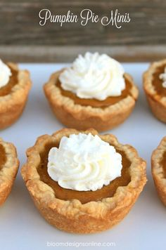 Mini Pumpkin Pies - @Lacee Chesnutt Chesnutt-Starr Horton I think I will be bringing these too!!