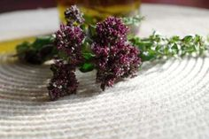 Jak zpracovat oregano Korn, Herbs, Harry Potter, Herb