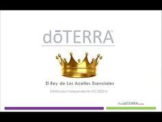 ▶ El Aceite Esencial de Incienso (El Rey de Los Aceites Esenciales) doTERRA - YouTube