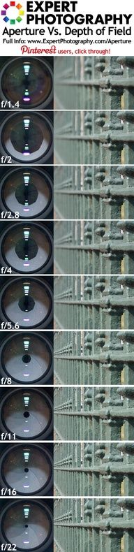 Aperture Vs. Depth of Field (f/)