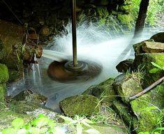 Morile de apă cu ciutură şi butoni de la Sicheviţa Turism Romania, Montana, Fountain, Aquarium, Waterfall, Outdoor Decor, Home Decor, Zoology, Flathead Lake Montana
