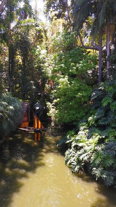 Small hut on the River Rainforests, Jungles, Exotic, River, Adventure, Nature, Beauty, Naturaleza, Tropical Rain Forest