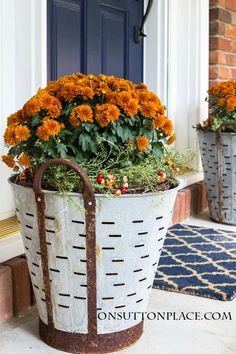 Fall Mums in Olive Buckets | Easy, DIY way to add a touch of vintage charm to your Fall porch decor. Includes photos on how to assemble.