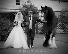 Last of the whitbread shires leading father & bride down the aisle hop farm paddock wood kent
