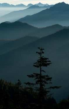 (via » Northern Exposure Eric Guth Photography)