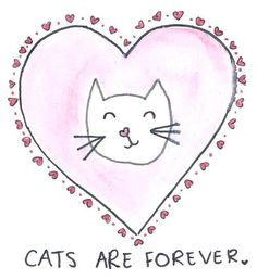 cats. i think mine have saved me a few times. that's why this pin is going on this board. because animals heal.