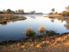 vers Nambwa campsite dans le parc national de Mudumu, Namibie