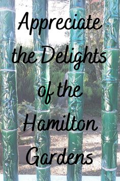 Appreciate the Delights of the Hamilton Gardens. Whether you have or three hours, make sure you visit the Hamilton Gardens. Nz South Island, Picnic Spot, Amazing Destinations, Travel Quotes, Lakes, Hamilton, New Zealand, Beaches, Appreciation