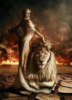 """LIONQUEEN"" by Christof Wetzel, check out more inspiring photos Lion Photography, Lion Love, My Fantasy World, Le Roi Lion, Lion Art, Beautiful Fantasy Art, Big Cats, Spirit Animal, Female Art"